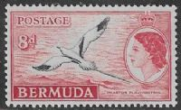 Bermuda SG143a 1955 Definitive 8d unmounted mint